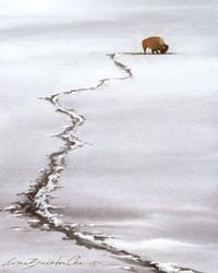 Art: Bison in Winter by Artist Lynn Bickerton Chan