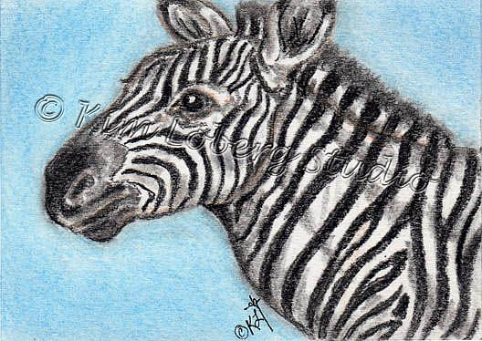 Art: Charcoal Zebra by Artist Kim Loberg