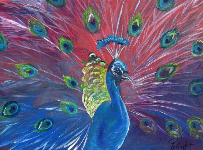 Peacock acrylic paintings - photo#21