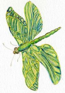 Detail Image for art Fuchia and Dragonfly