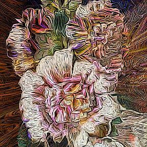 Detail Image for art Hollyhock Explosion