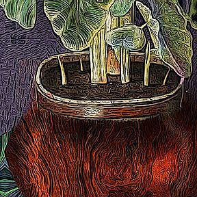 Detail Image for art Fractal Plant 2