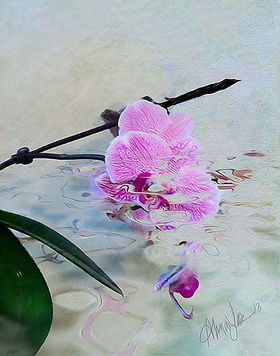Art: Wild Orchid by Artist Alma Lee