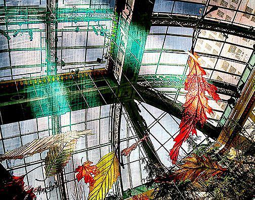 Art: Falling Leaves by Artist Alma Lee