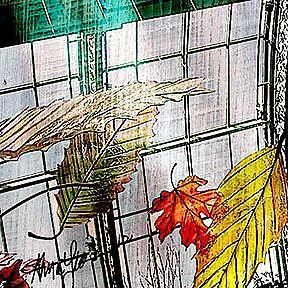 Detail Image for art Falling Leaves