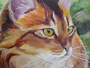 Detail Image for art Maine Coon Profile