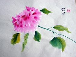Art: Single Peony by Artist Tracey Allyn Greene