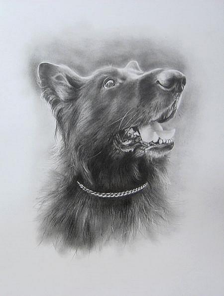 Art: ZEUS by Artist Ewa Kienko Gawlik