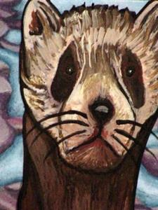 Detail Image for art Ferret on the Rocks