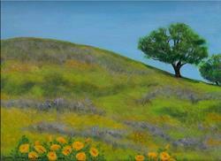 Art: Marin Hill with Poppies by Artist Carmen Gamboa Lienkaemper