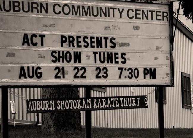 Art: Community Theater by Artist Lisa Miller