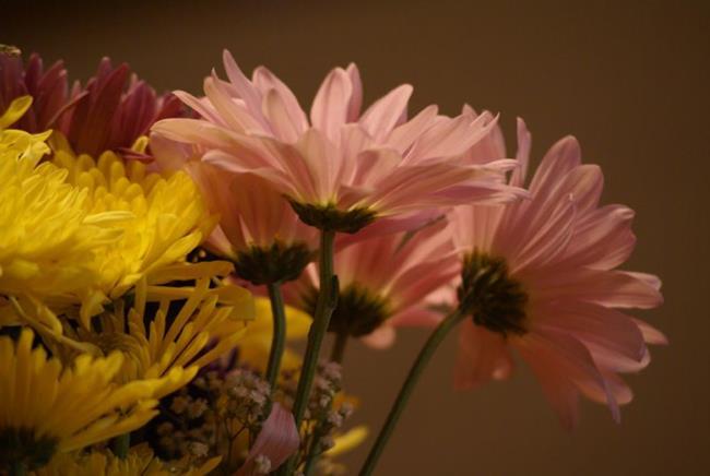 Art: Bouquet by Artist Lisa Miller