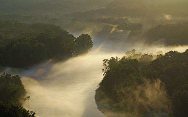 Art: Foggy River by Artist Lisa Miller