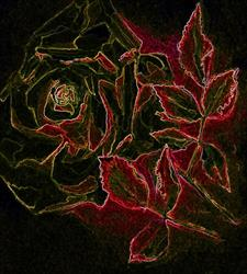 Art: a rose by Artist victoria kloch
