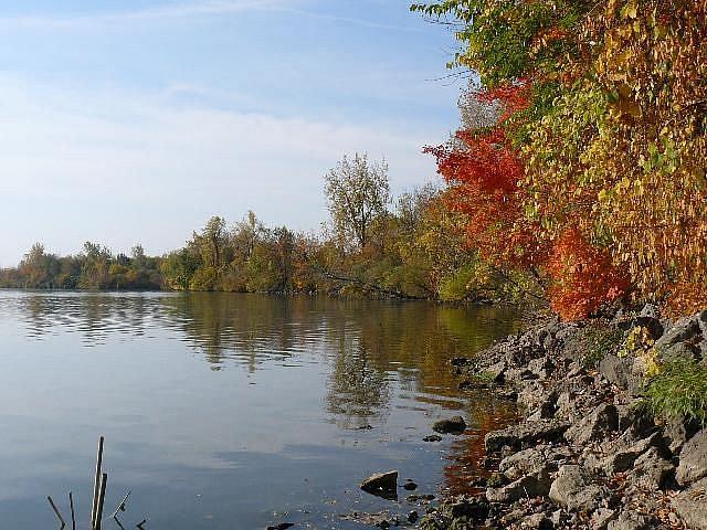 Art: Autumn at Prairie Creek Lake by Artist S. Olga Linville