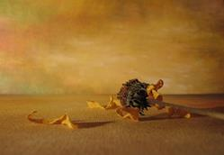 Art: Memory of Summer by Artist Ewa Kienko Gawlik