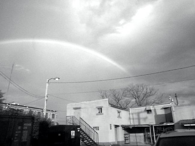 Art: Rainbow by Artist Marina Owens