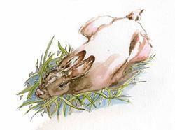 Art: Bunny in the Grass  by Artist Naquaiya