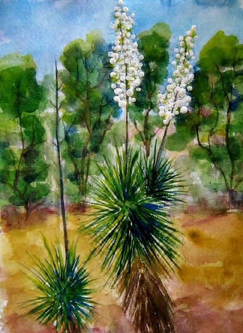 Art: Yucca Schidgora Liliaceae by Artist Diane Funderburg Deam