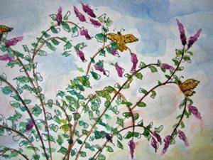 Detail Image for art Munds Park Butterfly Bush