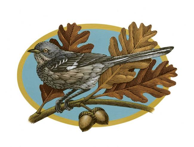 Art: Mockingbird by Artist John Thompson