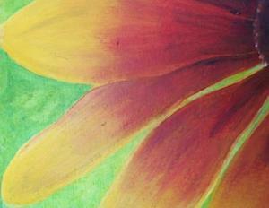 Detail Image for art Gaillardia