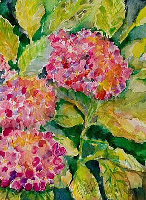 Art: Hydrangea-sold by Artist Delilah Smith
