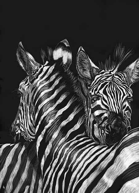 Art: Zebra Nuzzle by Artist Naquaiya