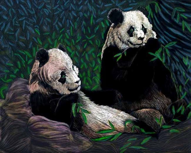 Art: 2 pandas by Artist Naquaiya