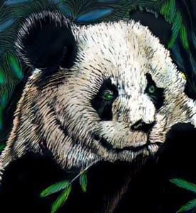 Detail Image for art 2 pandas