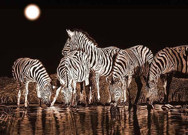 Art: Zebras Waterhole by Artist Naquaiya
