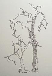 Art: tree study #2 by Artist Angie Reed Garner