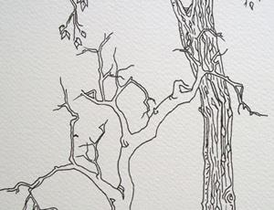 Detail Image for art tree study #2