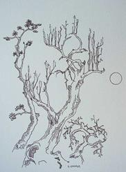 Art: tree study #5 by Artist Angie Reed Garner