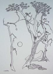 Art: tree study #7 by Artist Angie Reed Garner