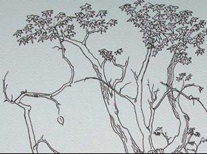 Detail Image for art tree study #7