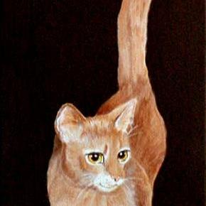 Art: Abyssinian Portrait by Artist Dia Spriggs