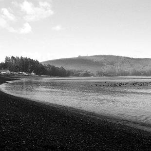 Art: Clallam Bay by Artist Christine Wasankari
