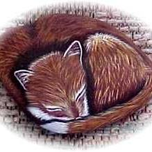 Art: Lil' Snoozer Fox Pup by Artist KiniArt