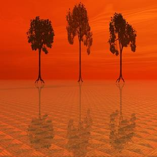 Art: Three Trees by Artist Carolyn Schiffhouer