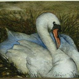 Art: Swan by Artist Deborah Leger