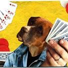 Art: Boxer Poker ACEO (SOLD) by Artist Took Gallagher