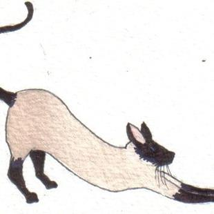 Art: ACEO SIAMESE CAT by Artist Dawn Barker