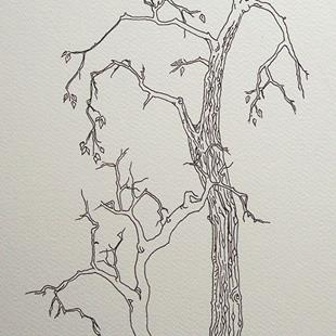 Art: tree study #2 by Artist Angie Reed Garner