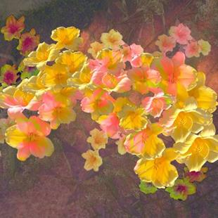 Art: Floating Flowers (Flora & Fauna Show) by Artist Carolyn Schiffhouer