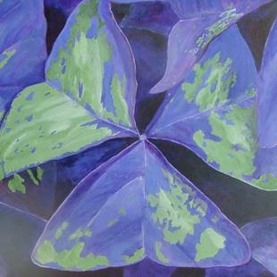 Art: Oxalis by Artist Donna Gill