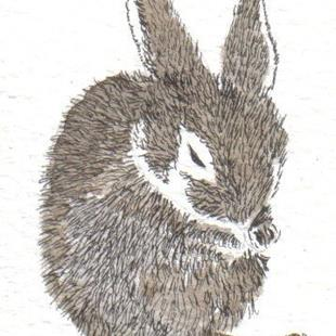 Art: Leveret by Artist Dawn Barker