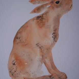 Art: HARE h428 by Artist Dawn Barker