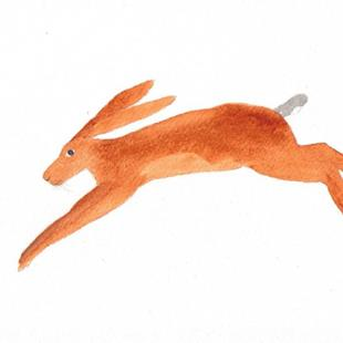 Art: HARE h430 by Artist Dawn Barker