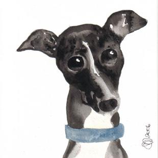 Art: Italian Greyhound by Artist Dawn Barker